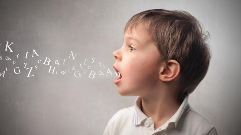 ¿Qué es el dictamen de escolarización?